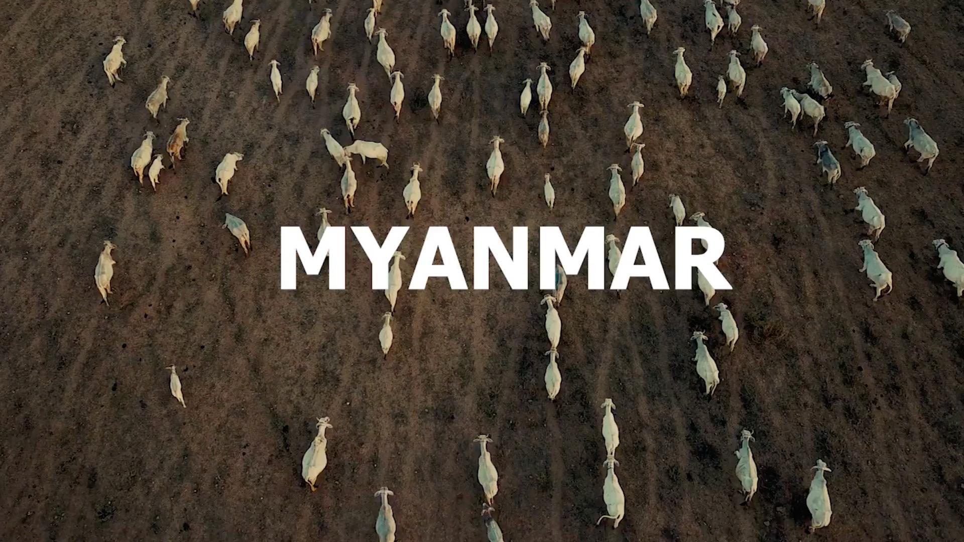 • Myanmar Travel