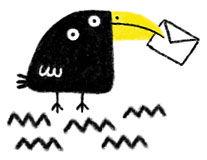 pajaro negro de pico amarillo_mensajero.