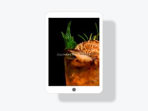 • Website Interface Concept