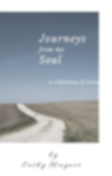 journeys of my soul cover picture.PNG