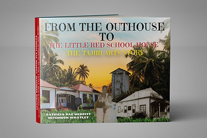 Cover_Promo_FROM_THE_OUTHOUSE_TO_THE_LIT