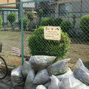 第1回公園清掃(新田第2児童遊園)