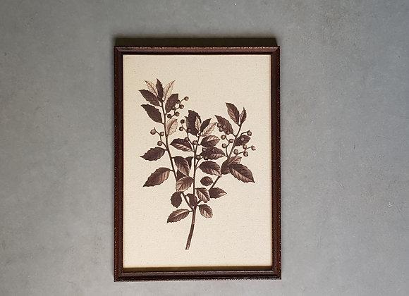 תמונת ענף עם עלים