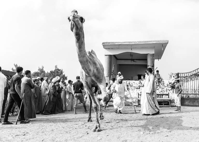 Souq Al-Gamaal