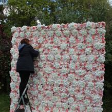 The Blush Flower Wall