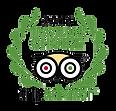 tripadvisor-badge.png.799x767.png