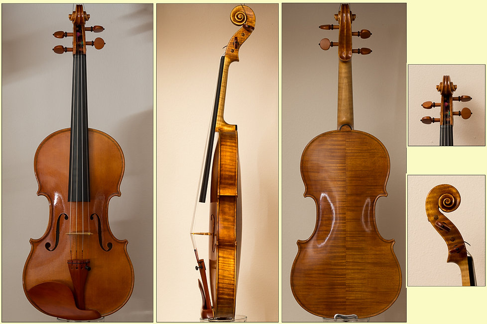 handmade 2013 violin, 1715 stradivari model, collage