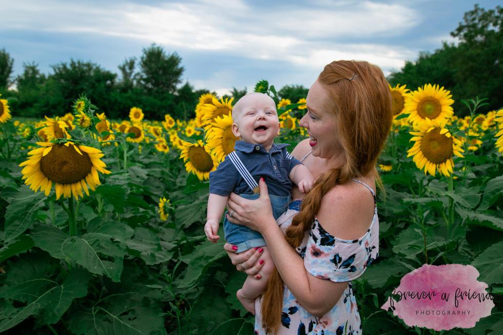 Sunflowers-3.jpg