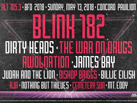 BFD 2018 rocks out with Blink 182