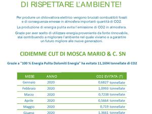 Scelta green