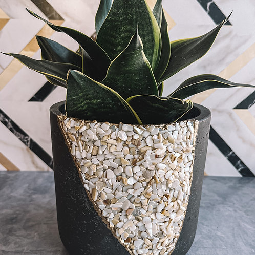 Mother of Pearl Large Planter