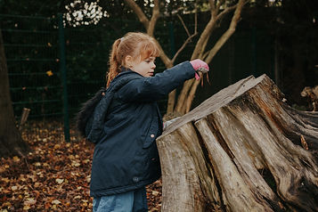 Girl picking up worm from log