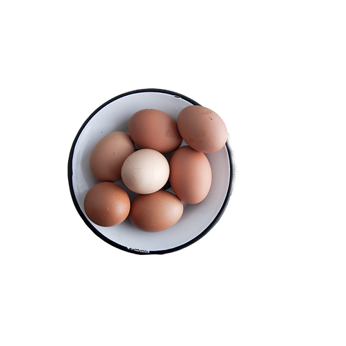 EGGS - Pack of 6
