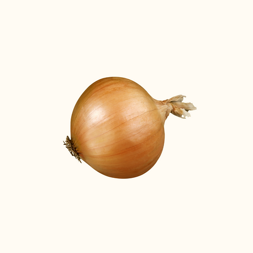 LARGE WHITE ONIONS