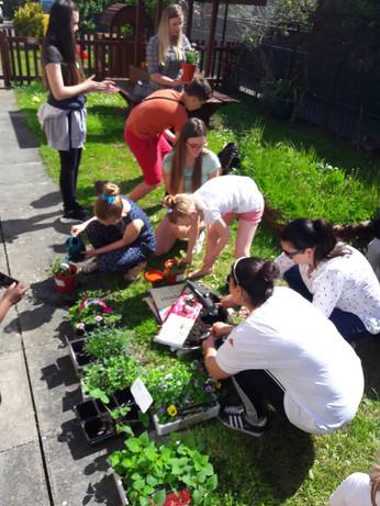19 May 2018. Gardening Day at the Saturday Club.