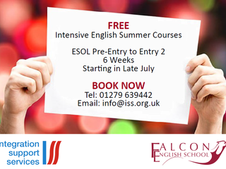 Free Intensive Summer Courses