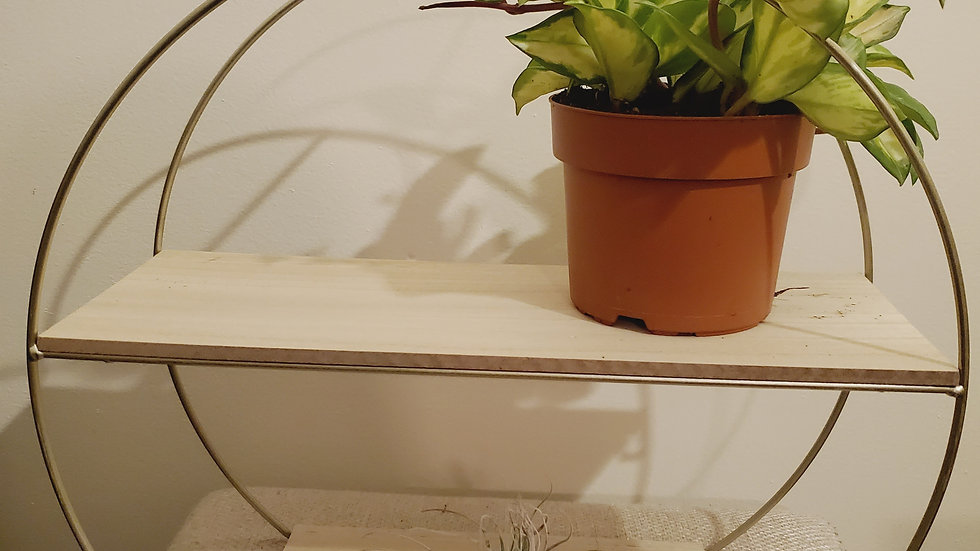 Gold Circle Wall Plant shelf