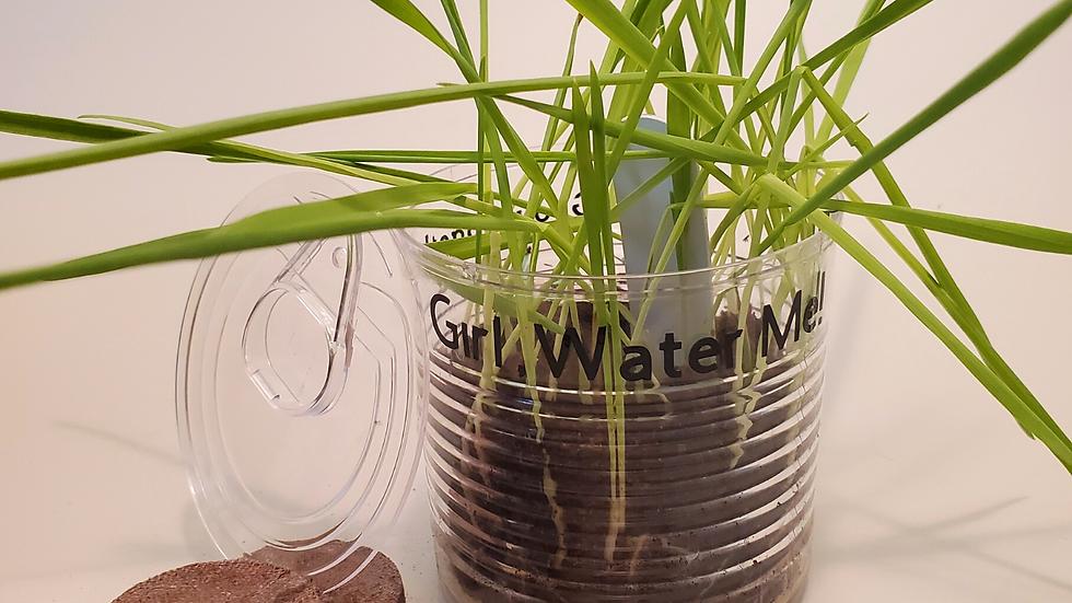 """""""Soil Mates"""" Kit"""