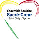 montpellier_sacre-coeur_st-chely.png