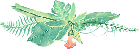 plantas tropicais