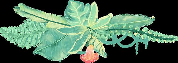 Tropikal Bitkiler