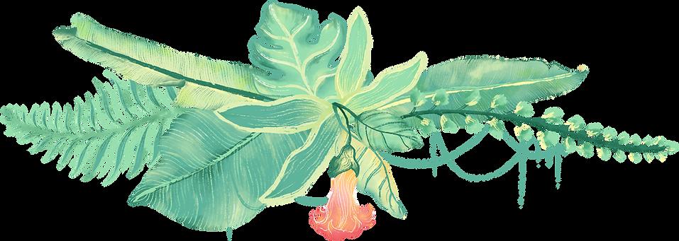 tropické rostliny