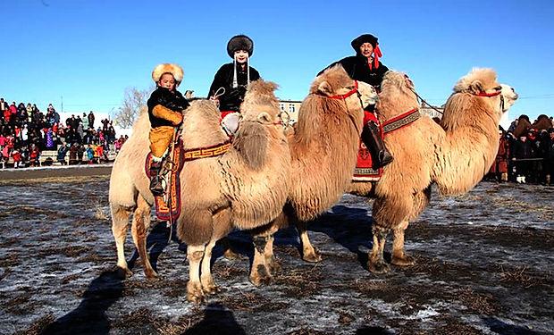 CAMEL FEST MONGOLIA.jpg