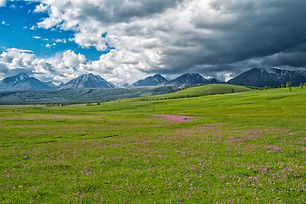 landscape-2454891.jpg