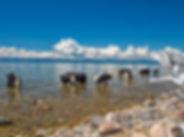 lake-2453967 (1).jpg