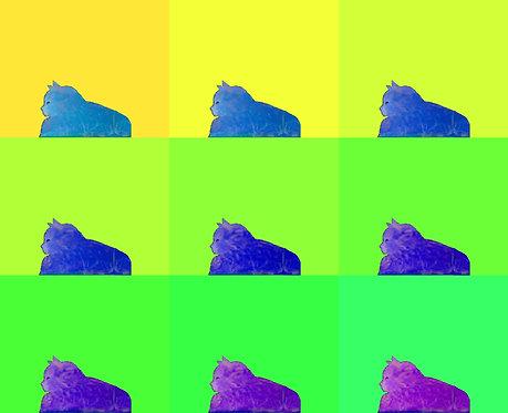 Nine Lives: Colors Series 1