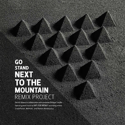 Go Stand Next To The Mountain Remix Project Limited Edition Vinyl