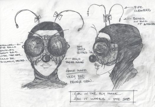 The Girl in the Fly Mask