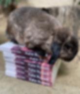 Voyage LA buns on books.jpg