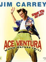 Ace Ventura - When Nature Calls I 1995 I DVD/BD