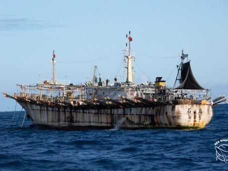 Barcos chinos serán monitoreados al ingresar en aguas peruanas.