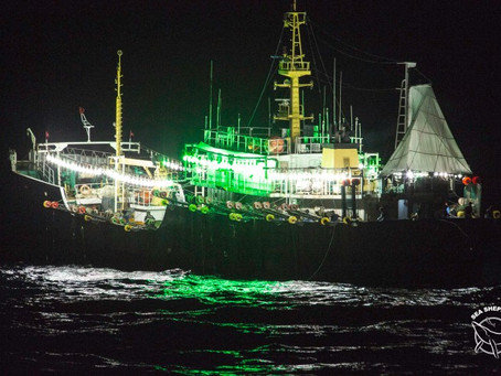 Aumentan los controles para la flota china en aguas peruanas