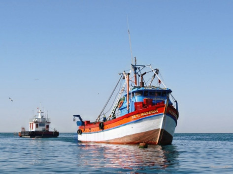 CALAMASUR welcomes the inclusion of the first two Peruvian artisanal boats in the SPRFMO