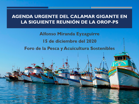 CALAMASUR presents its vision for the jumbo flying squid agenda at the next meeting of the SPRFMO
