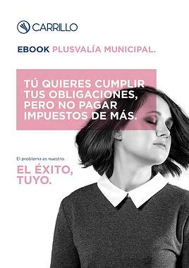ebook-plusvalia
