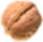 B-Nuss-ISS_9385_02938.png