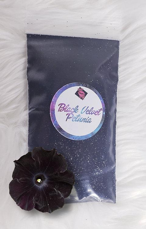 Black Velvet Petunia Hot Stuff Glitz Glitterz