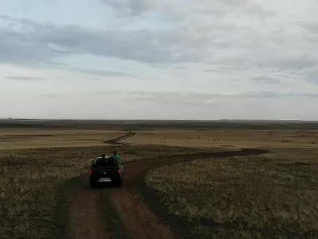 Diarios de un veterinario en Kazajistán, un fascinante país con una ganadería en crecimiento.