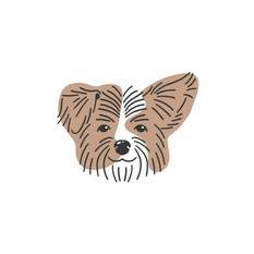 Cricket Dog