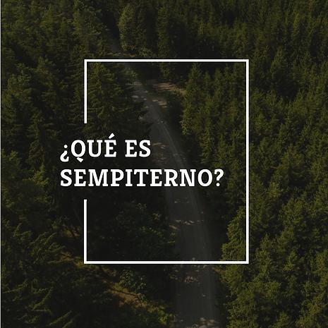 ¿Qué es Sempiterno?