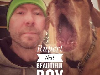 The Rupert