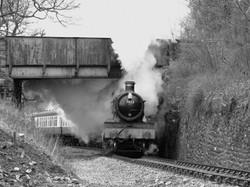 7822 Foxcote Manor leaves Berwyn