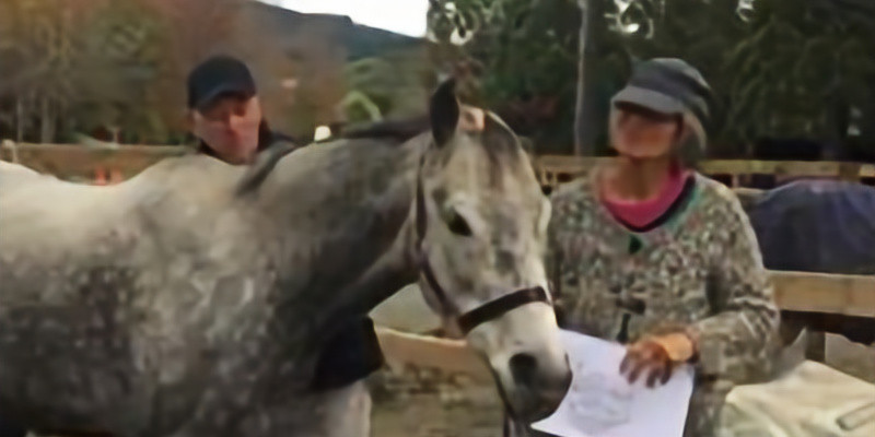 Horse & People Combination Course