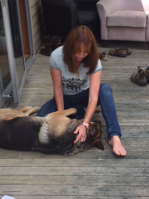 Dog Treatment Session