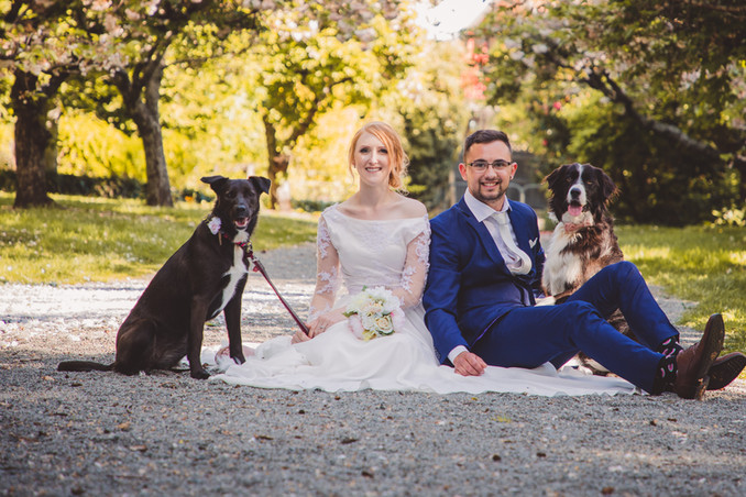 Bridal Party and Dogs