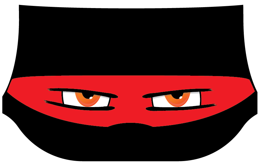 Ninja Eyes Screen Cover for VW Bay, T25, T4 and T5 vans